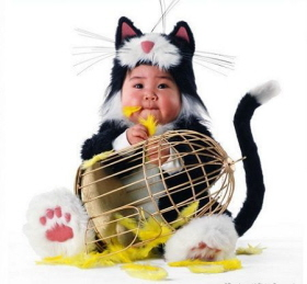 Disfraz de gato para bebés del fotógrafo Tom Arma