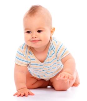 Gateo de los bebés de 8 a 12 meses
