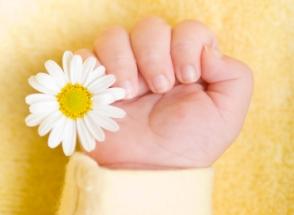 Motricidad fina bebes de 8 ocho a 12 doce meses que hace con las manos