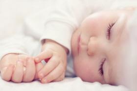El sueño es un proceso evolutivo