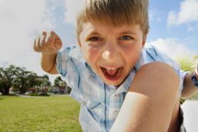 Diagnóstico y tratamiento de los trastornos de conducta