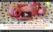 Curiosidades sobre el nacimiento del bebé   Elbebe.com