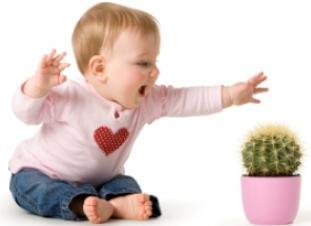 Prevención de accidentes y seguridad infantiles y de bebés